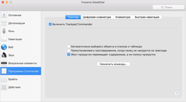 функция VoiceOver